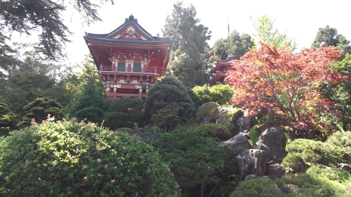 The pagoda in the Japanese Tea Garden in San Francisco's Golden Gate Park.