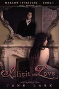 book illicit love