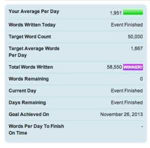 NaNoWriMo Final Update
