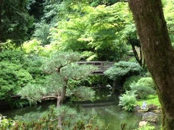 Feeling zen in the Japanese Garden in Portland, OR
